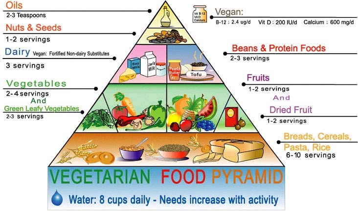 piramida-alimentelor-vegetariene