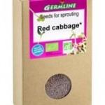 varza-rosie-seminte-pentru-germinat-bio